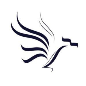 NorSK - Diseño de logotipo por Hicham Chajai
